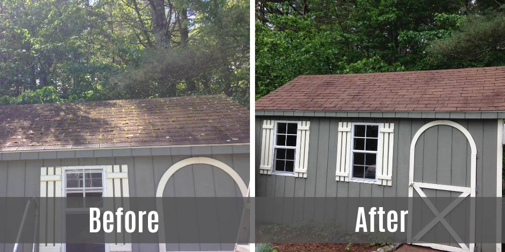shed-before-after